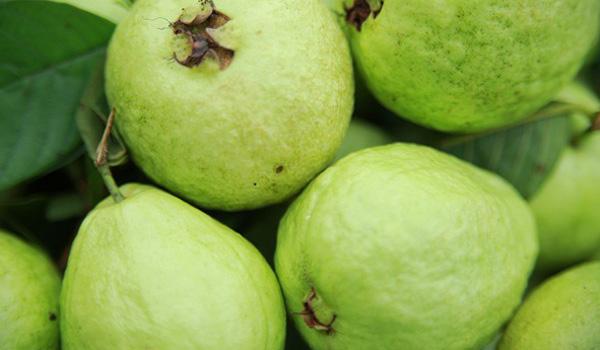 5 loại trái cây giúp trị tàn nhang trên mặt