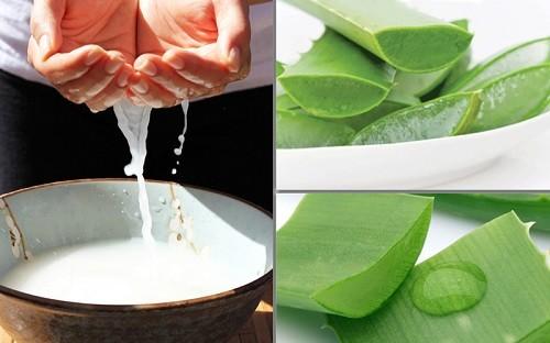 Kem đặc trị tàn nhang từ nha đam và nước vo gạo